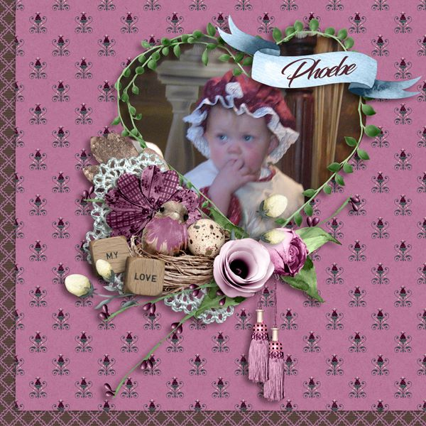 Scrapbookcrazy Creations by Robyn DD 8-15 Jan