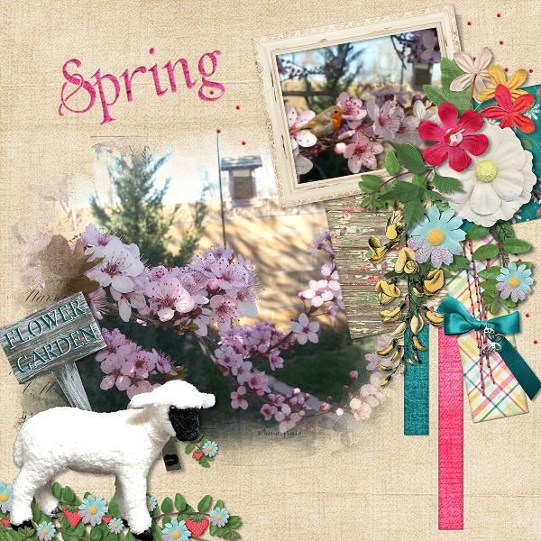 Spring In The Air- DFDD Daily Download