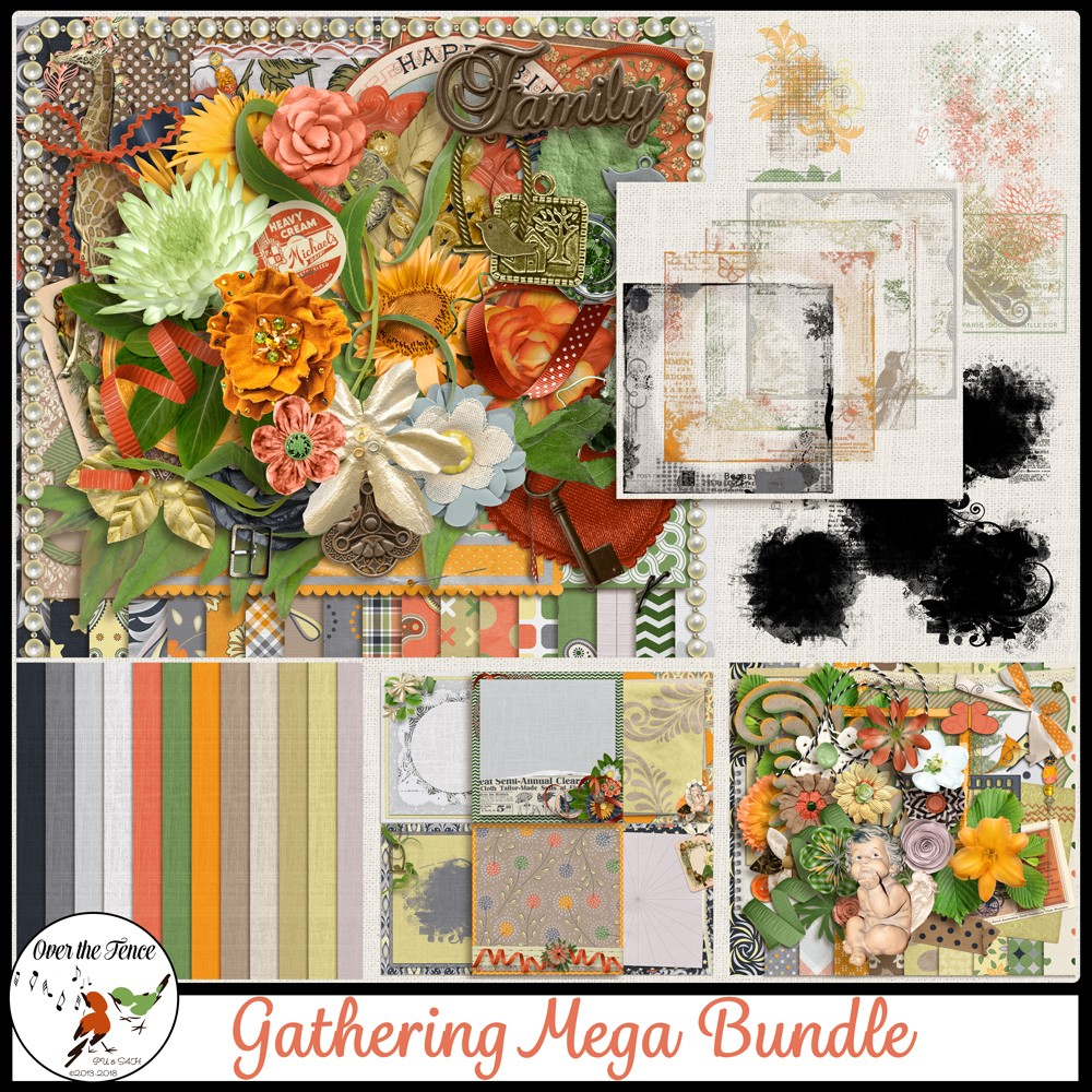 Spotlight Designer – Over the Fence Designs