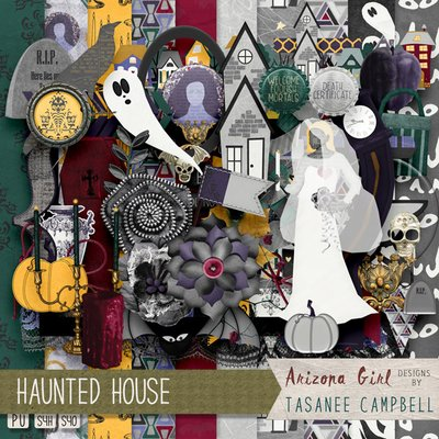 Haunted House kit by Arizona Girl