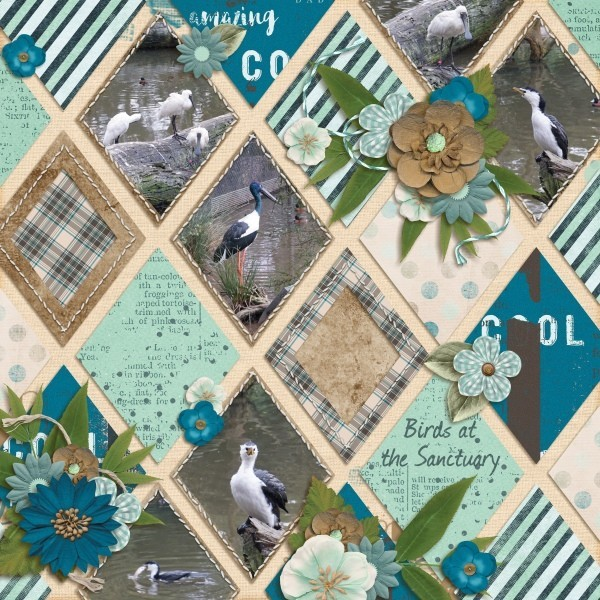 New templates by MDD Designs – Shape It
